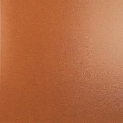 Плитка для пола Kerama Marazzi Фристайл 4541 50.2х50.2 коричневый