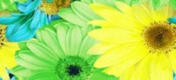 Бордюр Нефрит-керамика Кураж 2 05-01-1-93-00-81-074-0 25x11.5 Зелёный