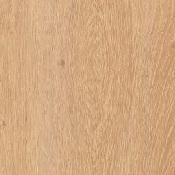 Ламинат Kastamonu Floorpan Blue Дуб Алжирский кремовый 33 класс 8 мм