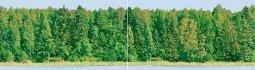 Панно Ceradim Flora Dec Forest Panno 25x90