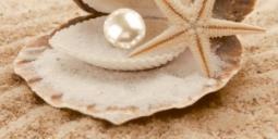 Декор Нефрит-керамика Аликанте 07-00-5-10-00-11-122 50x25 Коричневый