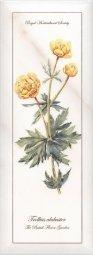 Декор Kerama Marazzi Ноттингем Цветы NT\A86\15005 15х40