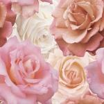 Декор Cersanit Wave roses WA6E452DT Розовый 44X44