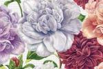 Вставка Cersanit Dalia DL2N451DT многоцветный 30x45